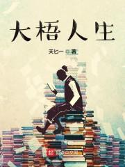 大梧人生免费无弹窗阅读